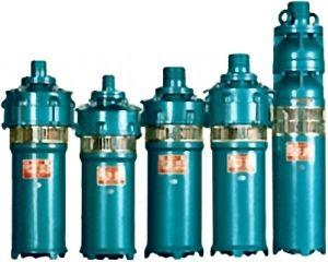 Submersible Electric Pond Pump (QS) pictures & photos