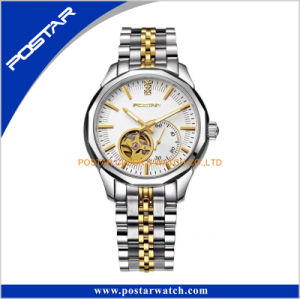 Japan Stainless Steel Automatic Watch Mechanical Waterproof Quality pictures & photos