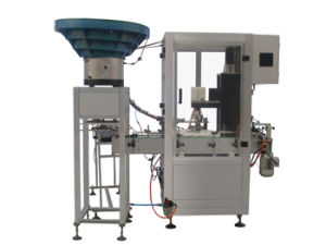 Automatic Catch-Screw Type Capping Machine pictures & photos