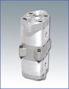 Two-Way Flow Gear Pump (CBTNL)