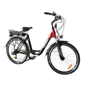Italian Manufacturer En15194 250W Electric Bicycle (TDF10Z)