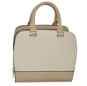 Hot Sell Ladies Tote Handbags (263C)
