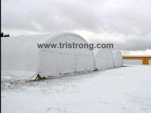 Aircraft Hanger (TSU-4536) pictures & photos
