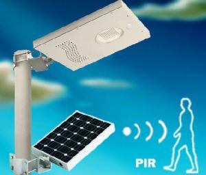 Intergrated Motion Sensor Rechargeable LED Solar Garden Light