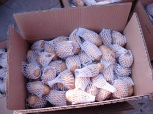 Good Quality Fresh Chinese Potato (100g-200g) pictures & photos