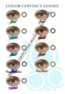 Freshlook Color Contact Lens