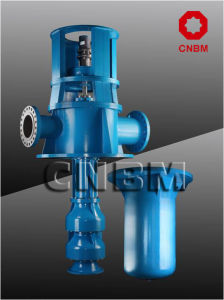 Vertical Turbine Pump Diesel Engine with Gear Box pictures & photos