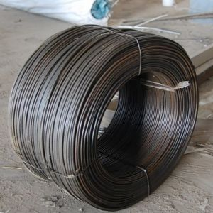 China Bwg 8-25 Black Annealed Wire (TYE-20) pictures & photos