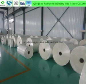 PE Coated Paper for Folding Box Board pictures & photos