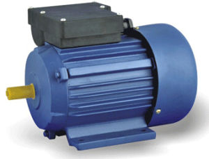 Series Heavy-Duty Capacitors Start Induction Motor (YY) pictures & photos