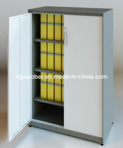 Metal Swing Door Cabinet for Storage (SV-SW1357) pictures & photos