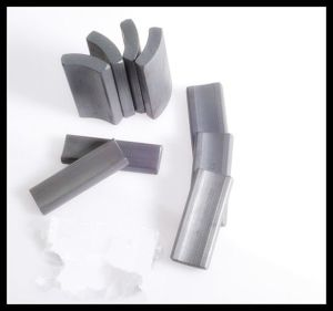 Magnet for Arc Starter Motor pictures & photos