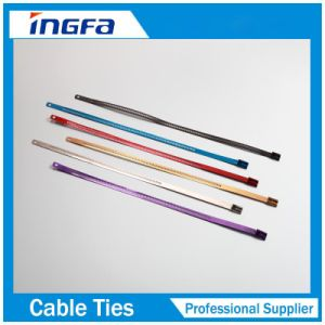 Epoxy/Plastic Coated Stainless Steel Zip Ties with Barb Lock 300mm 350mm pictures & photos