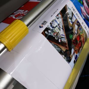 DMS Multi-Function Automatic Laminator with Cutter pictures & photos