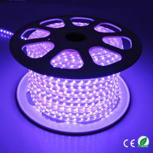 Beautiful LED Colorful Lighting Outdoor Christmas Lighting X′mas Light pictures & photos