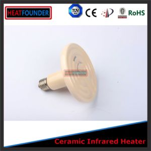 Ceramic Far Infrared Radiant Electric Heaters with Type K Sensor pictures & photos