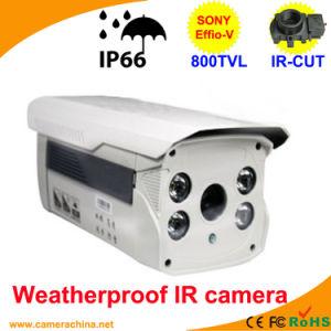 80m LED Array Sony Effio-V 800tvl Color IR CCD Camera pictures & photos