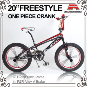 Big Tire 140h Spoke BMX Freestyle Bike (ABS-2052S) pictures & photos