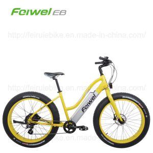 "26"" 250W Mountain Electric Bike (TDE11Z) pictures & photos"