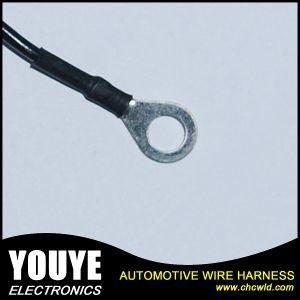Avss 8pin Wire Harness Automotive Wire Harness pictures & photos