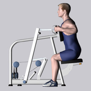 Home Gym Equipment Fitness Equipment for Seated Row/Rear Delt (M2-1015) pictures & photos