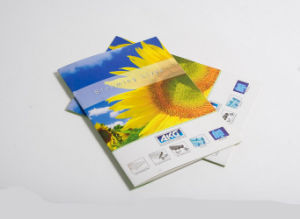 Busniess Catalogue Printing Service (jhy-209) pictures & photos