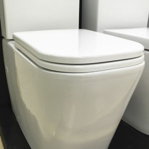 S-Trap 150/220mm Washdown Back to Wall Two Piece Toilet (6014) pictures & photos