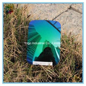 Tac Polarized Lens Emerald Green