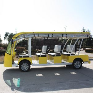 China Manufacture 11 Seats Electric Sightseeing Bus for Square (DN-11) pictures & photos
