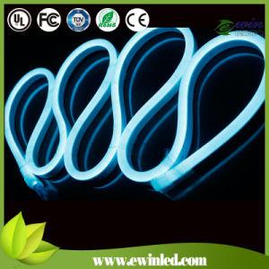 Digital AC220V DMX RGB LED Neon Rope Light pictures & photos