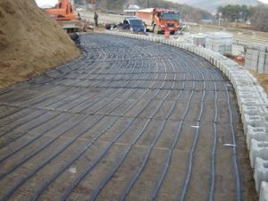 Lowest Biaxial Geogrid Price, PP Biaxial Geogrid with Ce Certificate pictures & photos