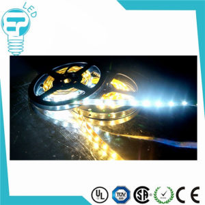 2015 Hot Selling Best Quality CE RoHS SMD 3528RGB 12V 24V LED Strip pictures & photos