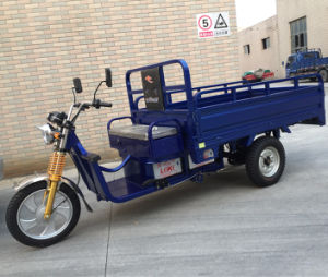 China Open Reverse Cargo Electric Vehicle for Sale (SYEV-A) pictures & photos
