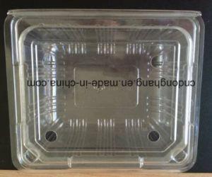 Plastic Lid Making Machine (DHBGJ-350L) pictures & photos