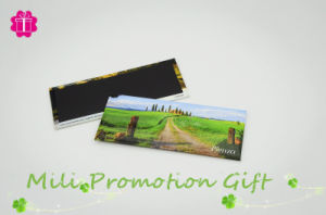 Facory Promotional Item Resin /Tin /PVC/ Fridge Magnets pictures & photos