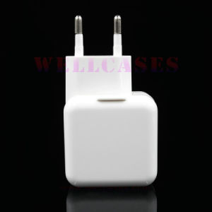 Wholesale Euro/USA Plug Undetachable Travel USB Adapter/Charger for Cellphone