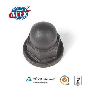 The Lowest Price Rail Locking Nut pictures & photos