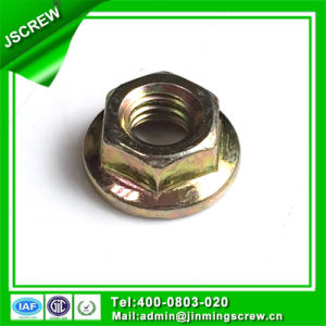 Factory Directly M6 Hex Flange Nut pictures & photos