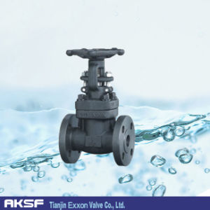 Bw/RF/Sw/Rtj API Forged Gate Valve pictures & photos