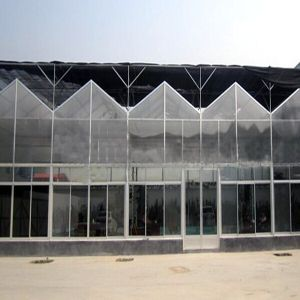 Agricultural Multi-Span PC/Glass Greenhouse for Vegetable pictures & photos