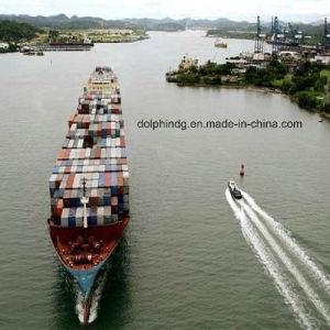 (Logistics) Freight Forwarder: LCL Ocean Shipping From Shenzhen/HK to Xiamen