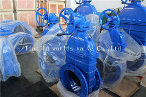 Wars Approved Rubber Resilient Seated Gate Valve pictures & photos