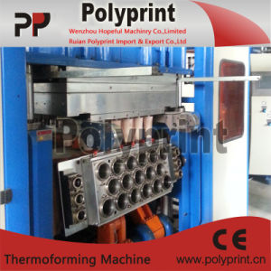 PP/PS Coffee Cup Making Machine (PPTF-70T) pictures & photos
