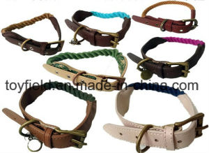 Pet Product Lead Leash Cat Dog Collar Pet Supply pictures & photos