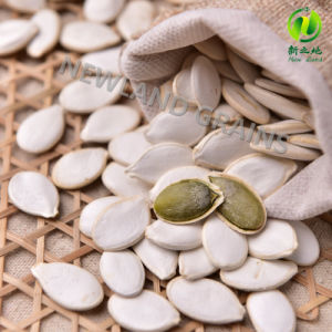 Snow White Pumpkin Seeds From Origin with Size 13mm 14mm for Cook pictures & photos