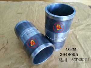 Excavator Spare Parts, Liner (3948095) pictures & photos