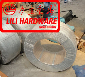 Wire, Steel Wire, Spring Steel Wire pictures & photos