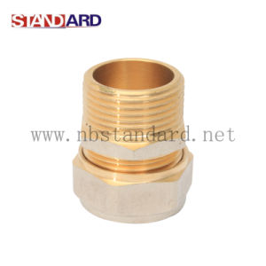 Straight Coupling Brass Fitting pictures & photos