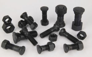 Plow Bolt & Nut for Get Parts pictures & photos
