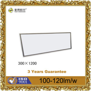 30*1200 LED Panel Light